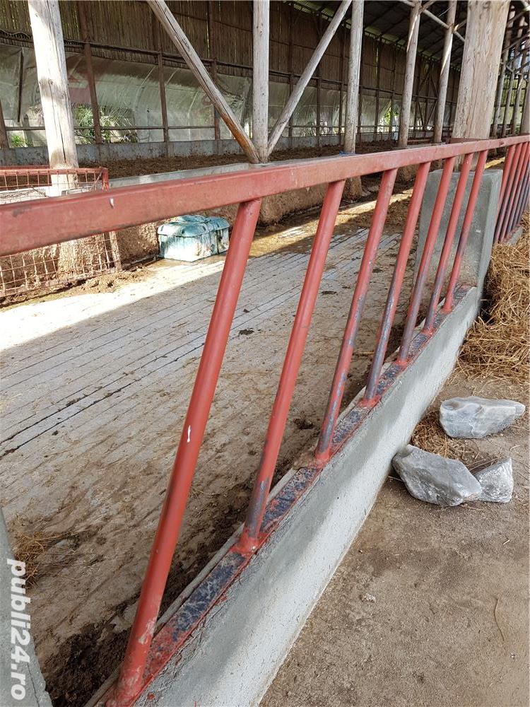 Vand 88 metri gard pentru delimitarea zonei de hrănire a vacilor talie mare, 110 capete.