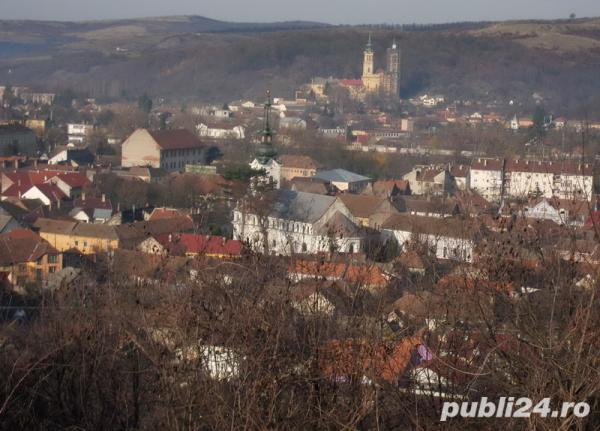 Loc de casă, central, Lipova 1000 m2
