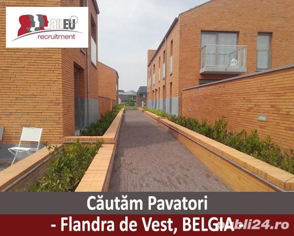 Pavatori - Belgia