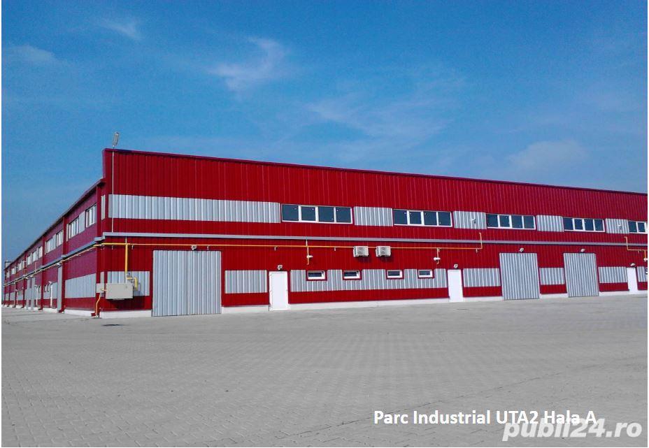 Hale de Vanzare in Parcul Industrial UTA2 - Arad