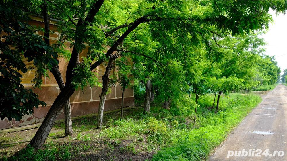 Vand casa Cebza, un colt de liniste si pace langa Timisoara (35 km)