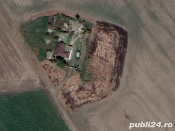teren intravilan cu casa in comuna Mihail Kogalniceanu , C-ta