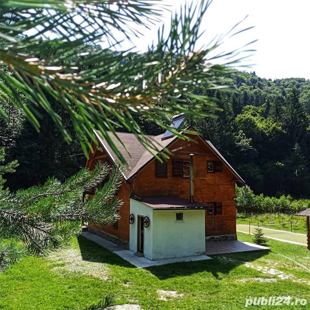 Cabana Lăcrămioara, sat vacanta Dejani, 20 km de Fagaras, jud. Brasov