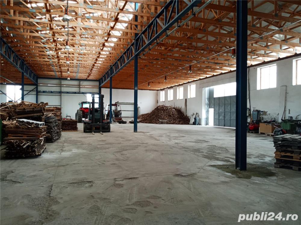 Imobiliare Maxim - fabrica de prelucrarea lemnului / hale