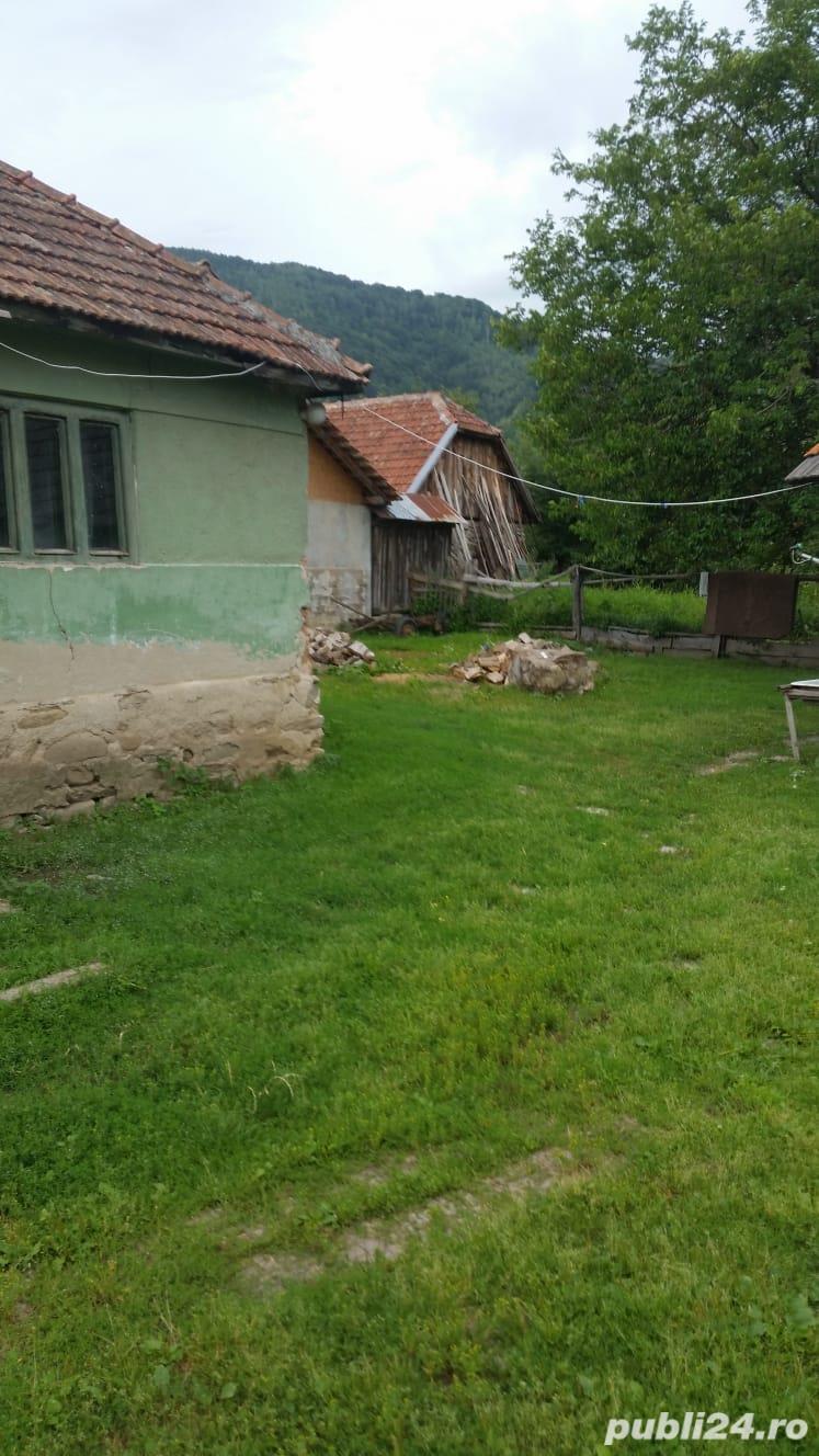 Casă și grădină la poalele retezatului zona turistică Țara Hațegului