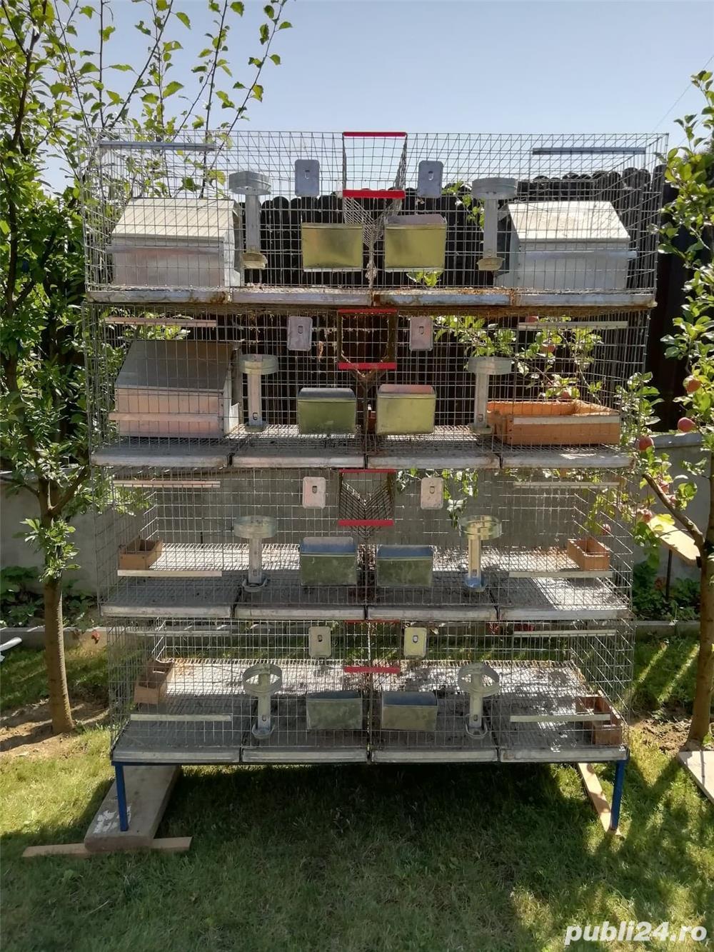 Vând cușcă iepuri în sistem modular cu 8 compartimente