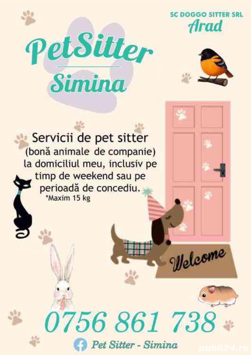 Pet Sitter Simina - Arad