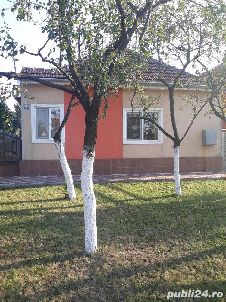 Vand casă în Sânandrei