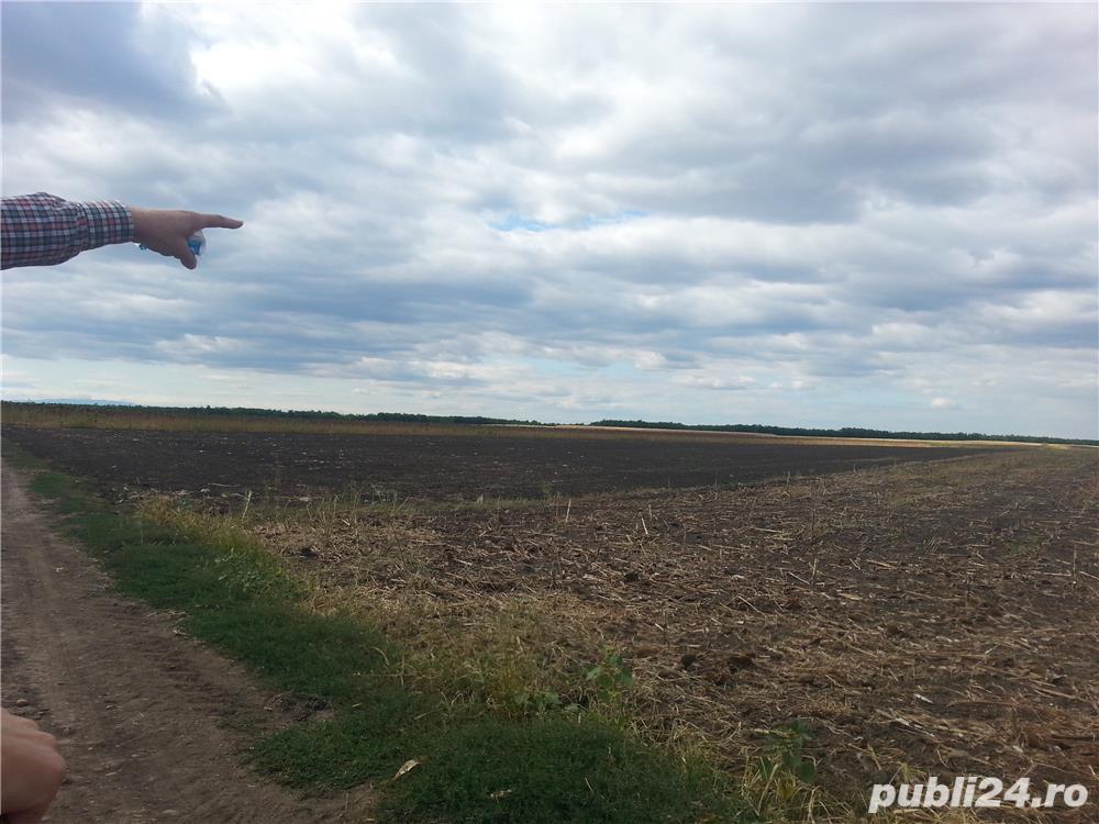 Vând 1,5 ha teren arabil în comuna Valea Mărului, sat Mândrești, jud. Galați