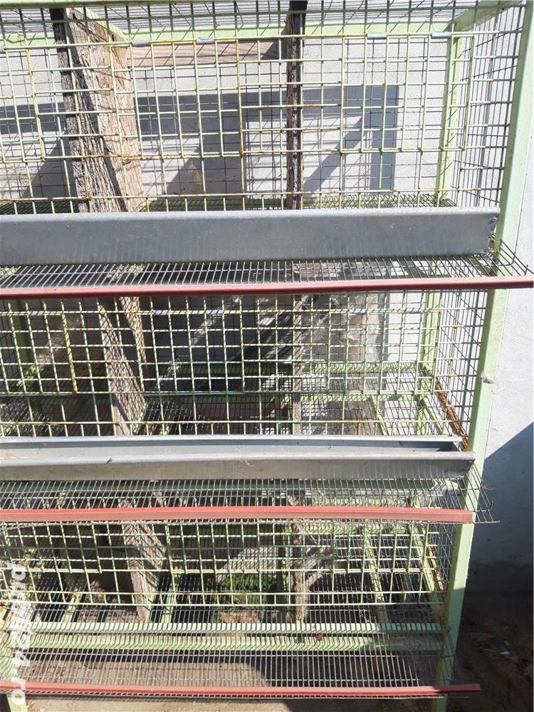 Vând stand pentru creșterea potarnichilor sau pentru porumbei