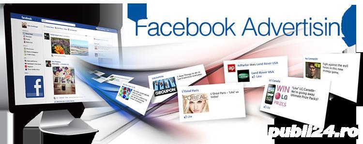 Specialist PPC Google AdWords - Specialist Marketing Online caut Firma