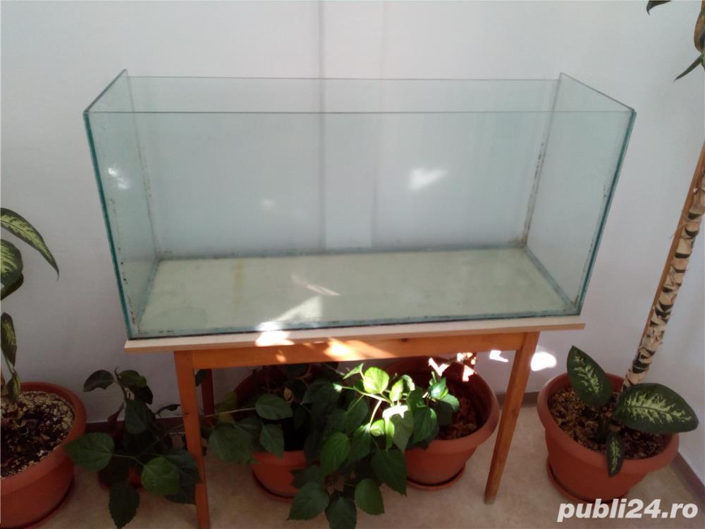 Vand acvariu