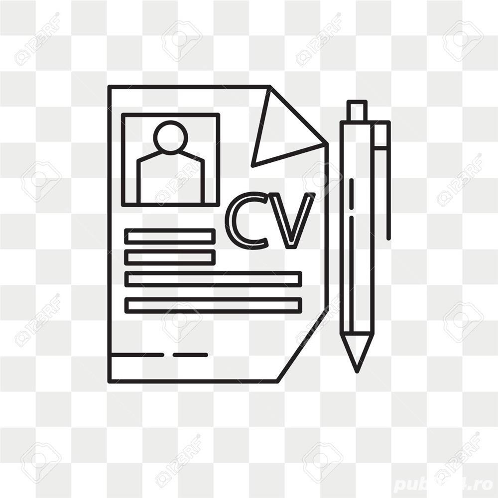 Redactare CV / Curriculum Vitae Romana/germana/engleza