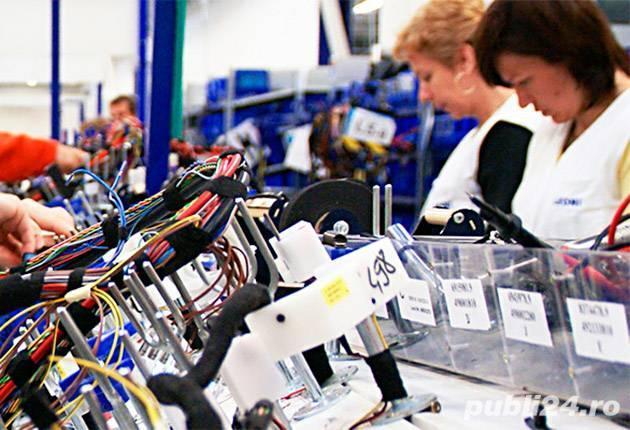 Locuri de munca la fabrica de cablaje auto Bistrita