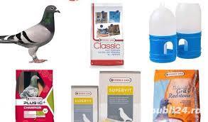 Vitamine si minerale pentru porumbei