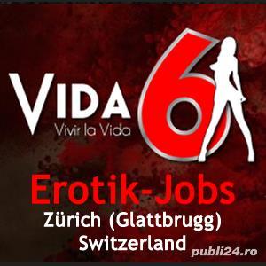 Vida6 - Elveția