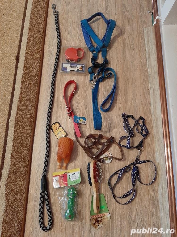 Set accesori catei !Produsele sunt noi!