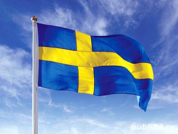 Fierar Betonist pentru Suedia URGENT