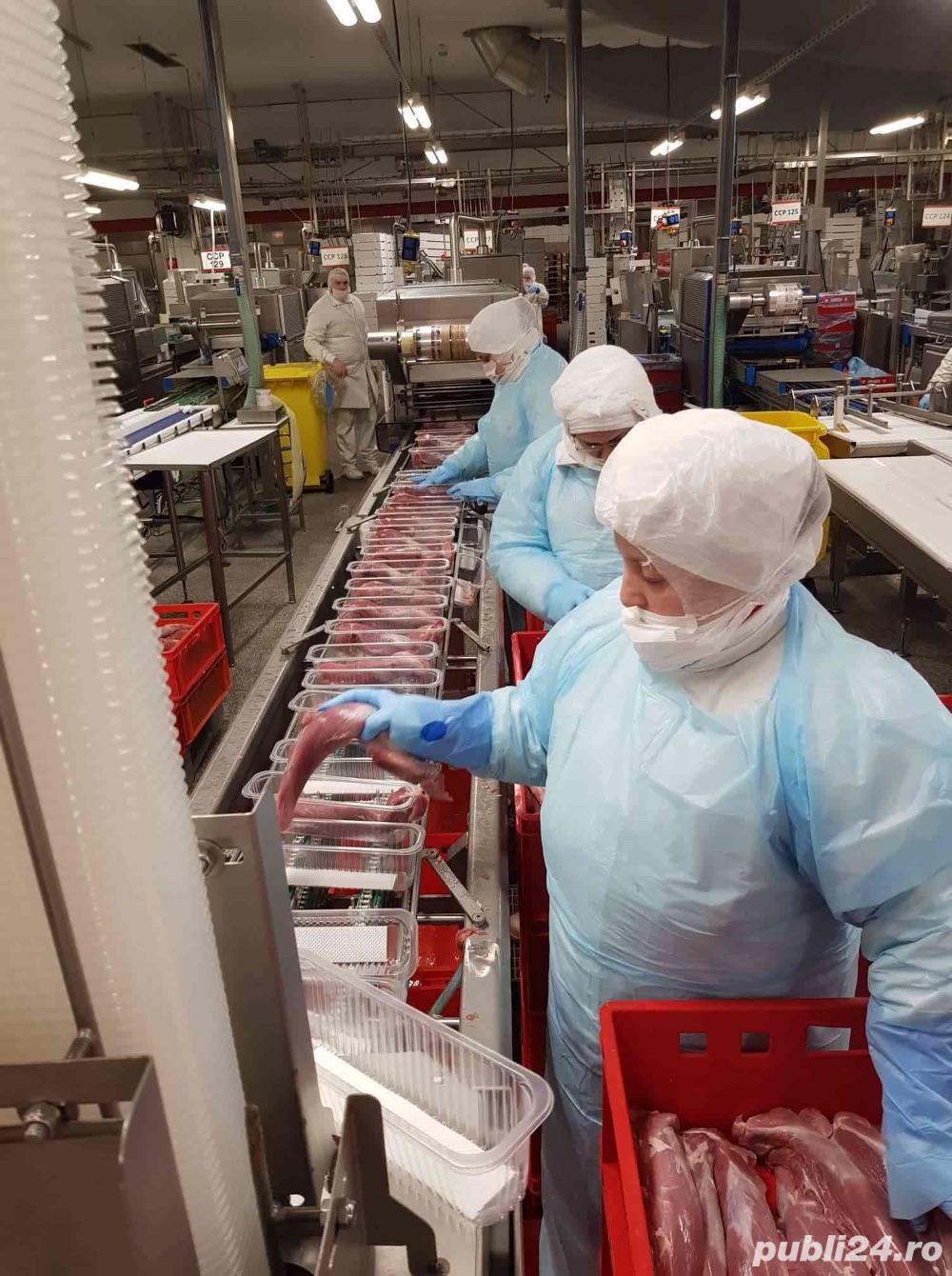 Se cauta urgent muncitori pt Germania 1000-1300 Euro/luna