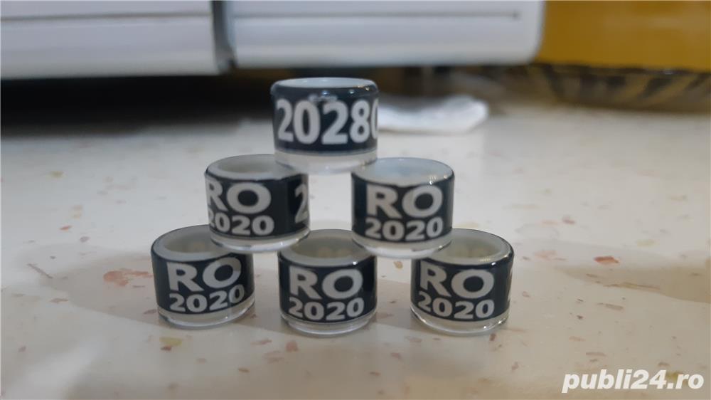 Vand inele de porumbei 2020