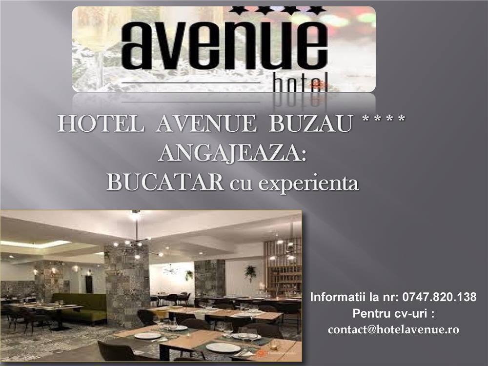 HOTEL AVENUE BUZAU ANGAZEAJA