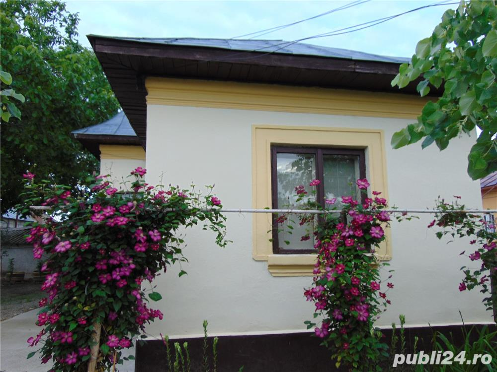Casa in comuna Curtisoara, sat Proaspeti, aflata la 1 km de Slatina.