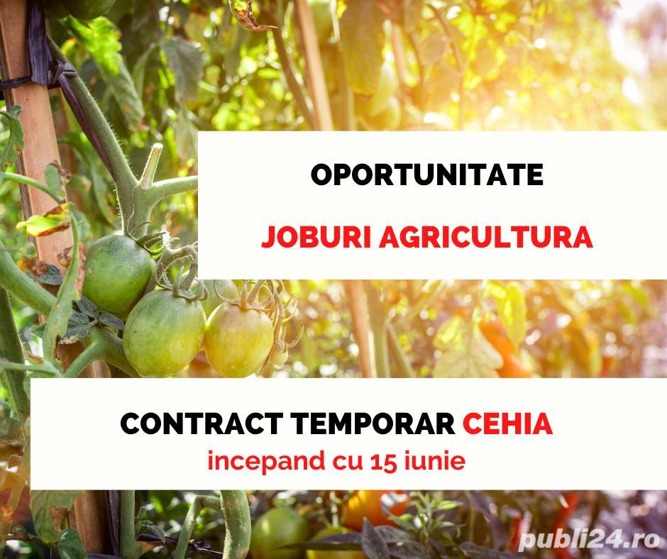 Loc de munca agricultura Cehia