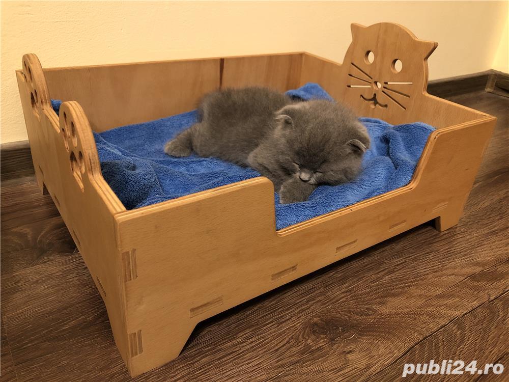 Pătuț pisică/cățel