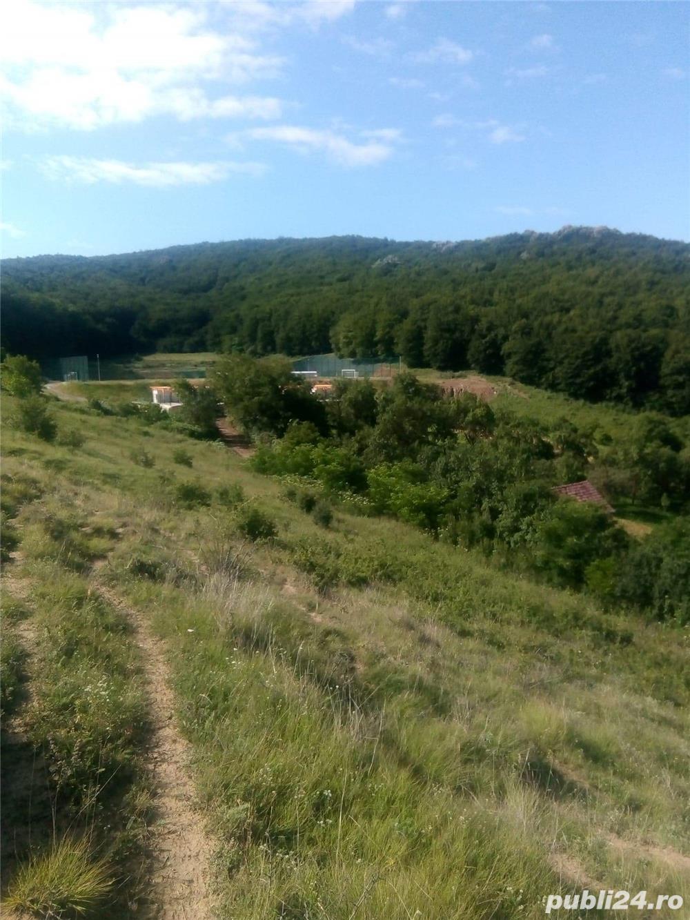Vând casa cu teren de 3200mp în sat Visea comuna Jucu la 30 km de Cluj