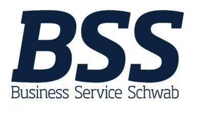 BSS cauta soferi profesionisti CE Karlsruhe