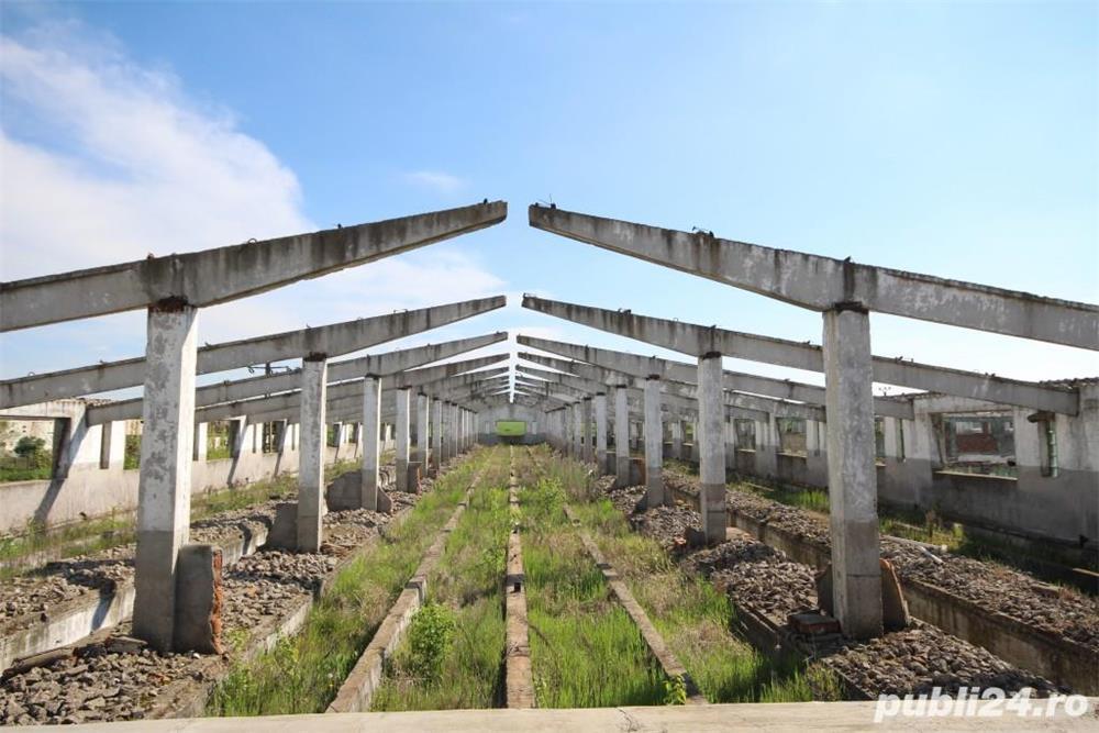 Teren edificabil la sosea,.Ortisoara Timis. 62.000 m patrati