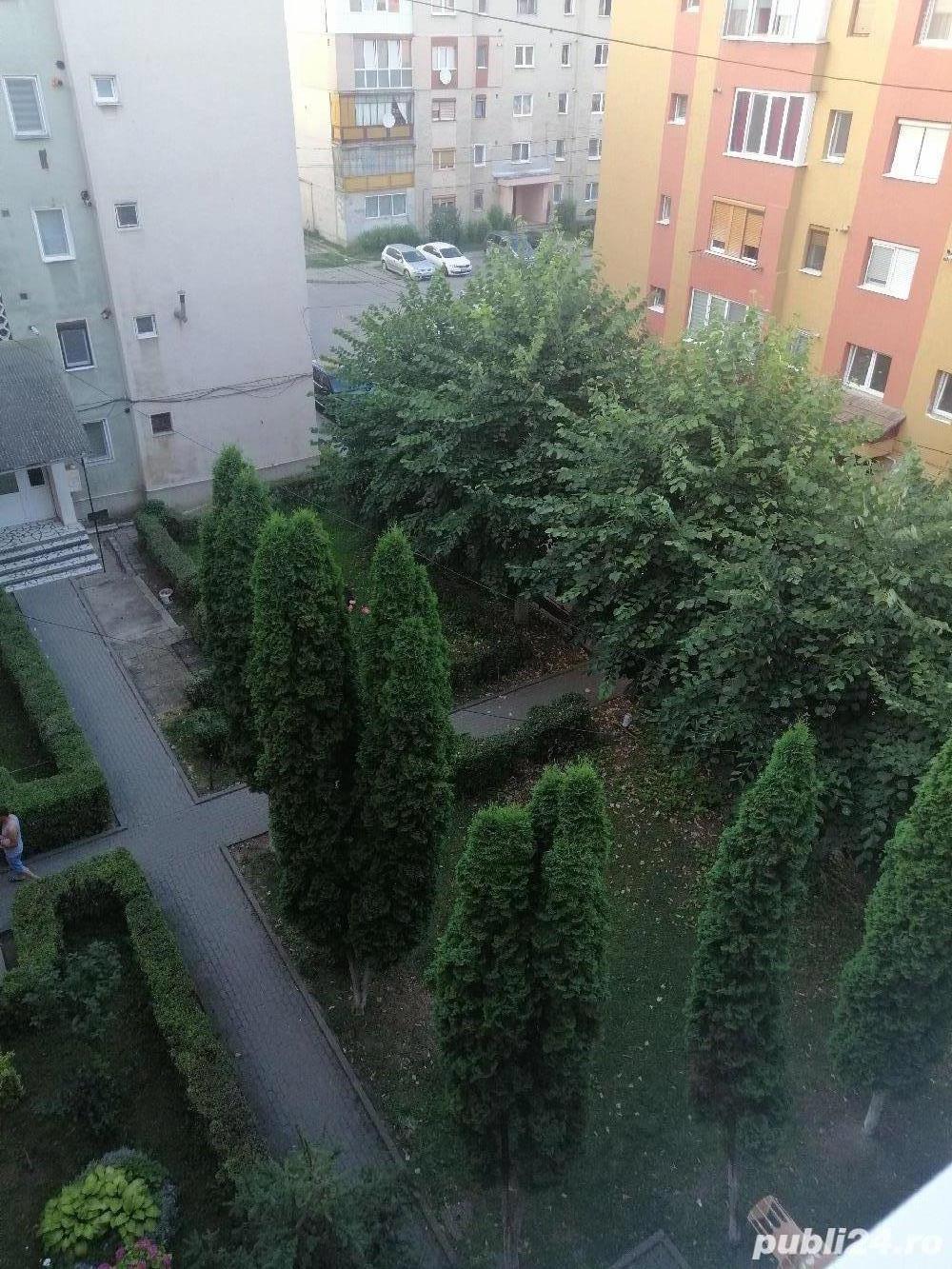 Apartament 2 camere Sebeș Alba