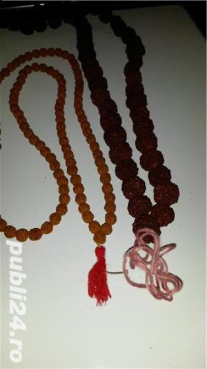 samburi rudraksha - imagine 1