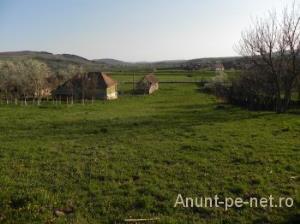 Vand teren langa Bucuresti - imagine 2