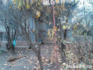 Casa batranesca + gradina in Comuna Vidra, Jud. Ilfov - imagine 4