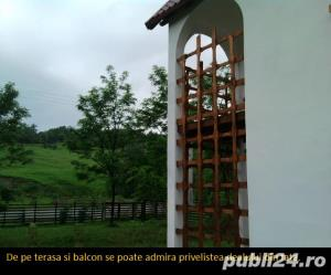 Vila langa Campina 45500 euro - imagine 5
