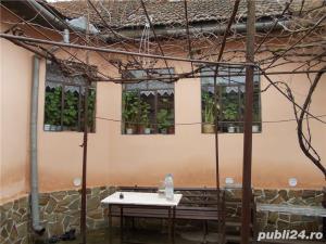 vand casa in Criciova - imagine 3