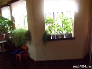 vand casa in Criciova - imagine 6