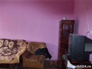 vand casa in Criciova - imagine 13