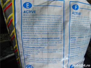 Vand hrana caini marca LOBBY  Active - imagine 3