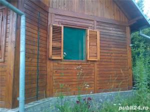 casa de vacanta in Provita de Jos ,sat Draganeasa - imagine 8
