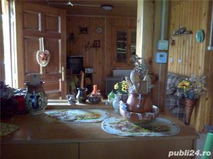casa de vacanta in Provita de Jos ,sat Draganeasa - imagine 5