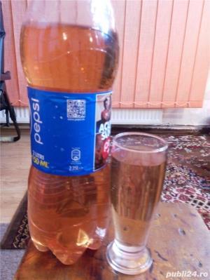 Produse din strugurii vin si tuica - imagine 1