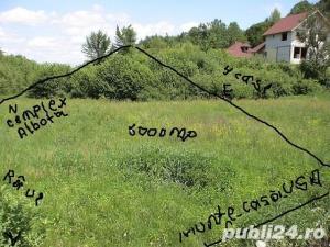 P.F.Arpasu de sus-Albota Sibiu 6000mp  teren intravilan utilitati,munte,rau,padure,strada asfaltata - imagine 6