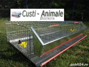Custi pentru prepelite,pui,gaini,porummbei,iepuri,chinchilla,caini,pisici etc - imagine 6
