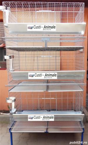 Custi pentru prepelite,pui,gaini,porummbei,iepuri,chinchilla,caini,pisici etc - imagine 9