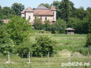 teren ieftin de vanzare langa castel si lac la Hateg - imagine 1