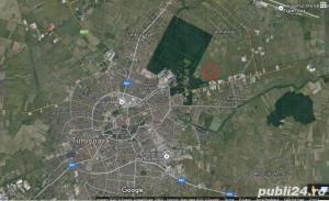 Teren excelent pentru cartier rezidential, la Padurea Verde Timisoara - imagine 1