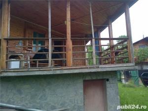 casa de vacanta in Provita de Jos ,sat Draganeasa - imagine 7