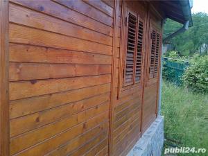 casa de vacanta in Provita de Jos ,sat Draganeasa - imagine 6